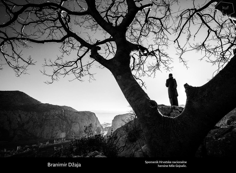 © Branimir Džaja